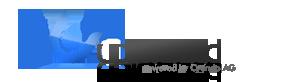 uploaded-logo